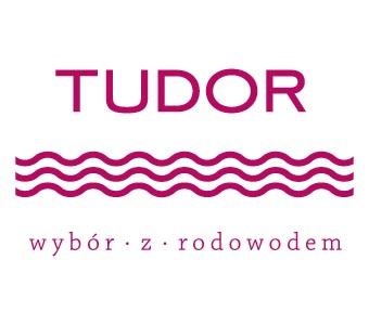 Nowe Logo Tudor House
